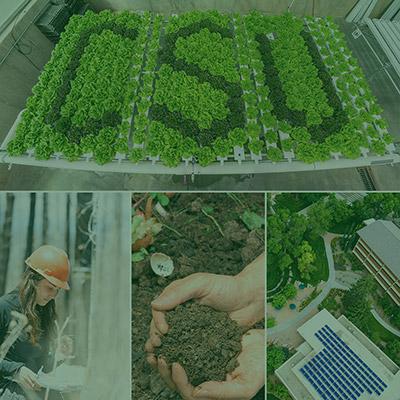CSU Sustainability