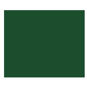 aashe top performer logo
